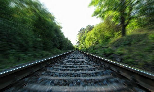 Kidőlt egy fa, a vonat se jár