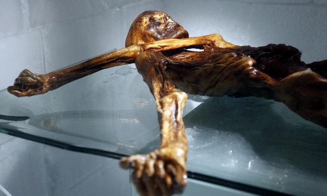 Megvan, mit evett utoljára Ötzi, a gleccsermúmia
