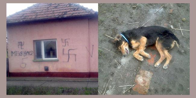 Horogkereszttel és döglött kutyával fenyegettek meg egy roma családot