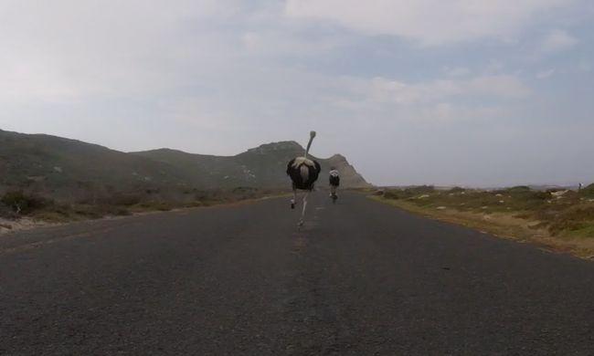 Strucc kergette meg a biciklistákat - videó