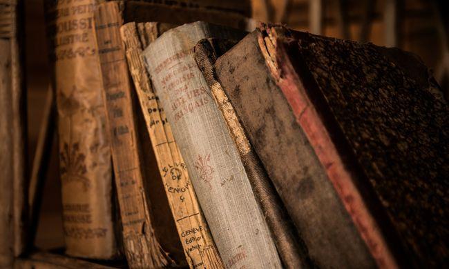 A magyar irodalom a főszereplő Lengyelországban