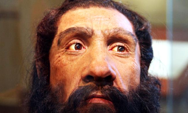 Nehezen esett teherbe a homo sapiens a neandervölgyi embertől