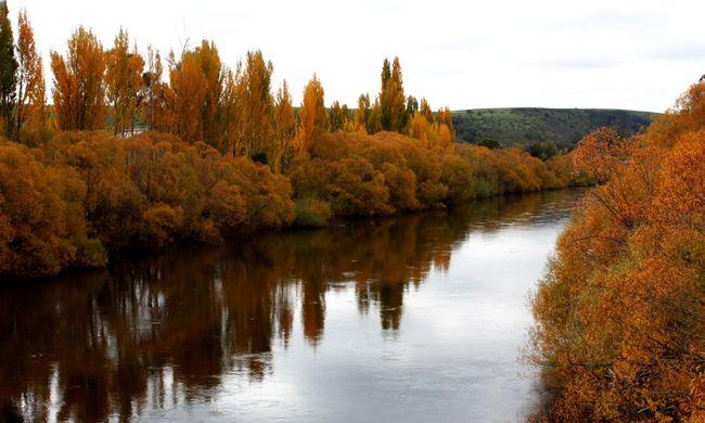 Tilos lesz a fakitermelés Tasmania világörökségi területén