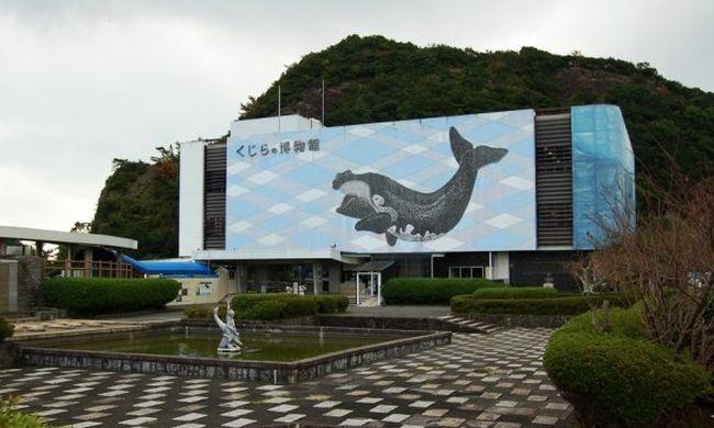 Japán kártérítést fizet egy állatvédőnek, mert nem engedték be egy japán bálnamúzeumba