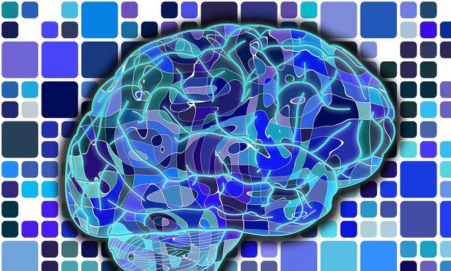 A tinédzserek agya nem tud mit kezdeni a gyors növekedéssel, ezért járnak esetlenül