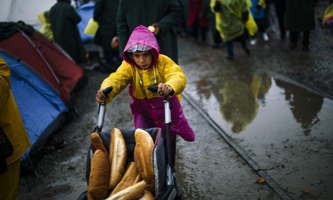 83 millió eurót kap az EU-tól Görögország a migránsok ellátására