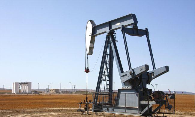 Megint kőolajat és földgázt talált a Mol Pakisztánban