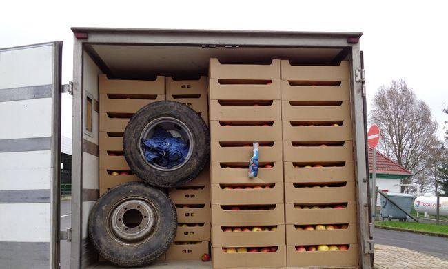 15 tonna csempészett krumplit és almát foglaltak le az ellenőrök