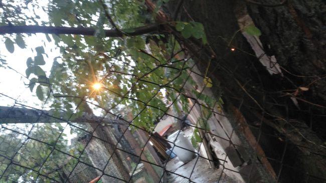 Áramot vezetett a kerítésbe