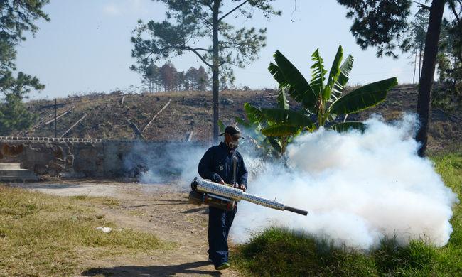 Félmilliárd dollárt áldoz Amerika a zika elleni küzdelemre