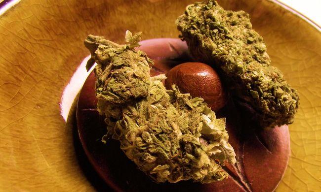 Egy tonna marihuána volt a Jamaicából érkező hajón