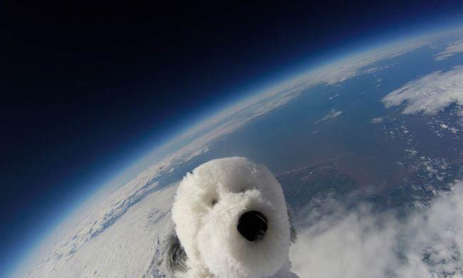 Elveszett az űrben egy plüsskutya - videó