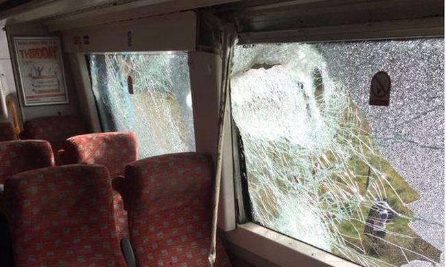 Elütötte a traktort a vonat, a sofőrt mentőhelikopterrel vitték kórházba - videó