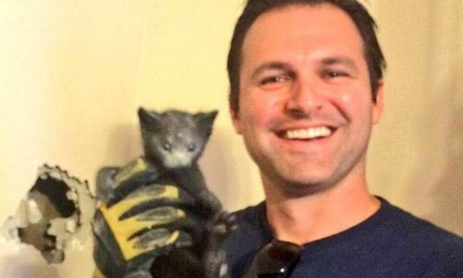 Ház falába szorult egy kiscica, a nyávogását hallotta meg a család