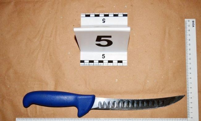 Férje mellkasába állította a kést, elege lett az 53 éves feleségnek