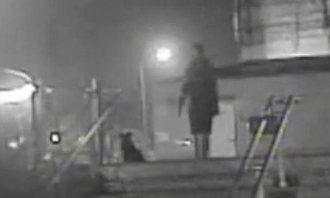 Késsel végezte ki a kutyát és kölykeit a metrónál, letartóztatták - videó
