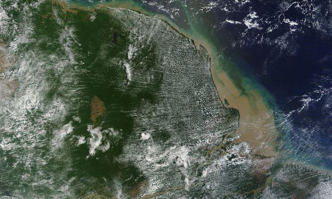 Óriási korallzátonyt találtak egy folyótorkolatnál