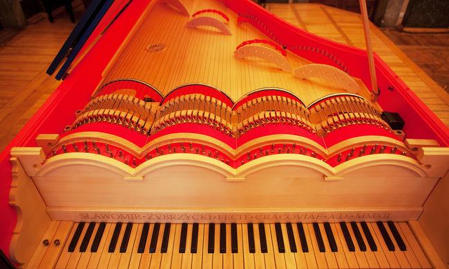 Magyarországra hozzák da Vinci titokzatos hangszerét - videók