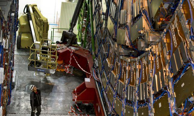 Menyét miatt volt áramszünet a nagy hadronütköztetőben