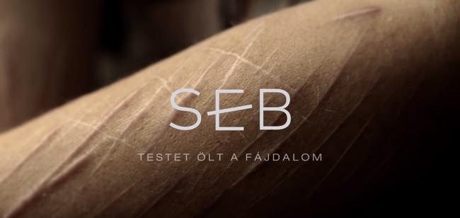 A Seb lett a legjobb dokumentumfilm