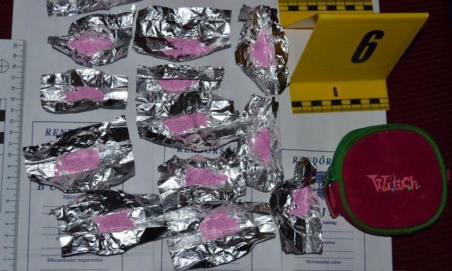 Rengeteg kábítószert és fegyvereket is találtak egy komlói férfinál - videó