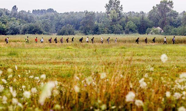 Szökött migránsok gyalogoltak az M7-esen