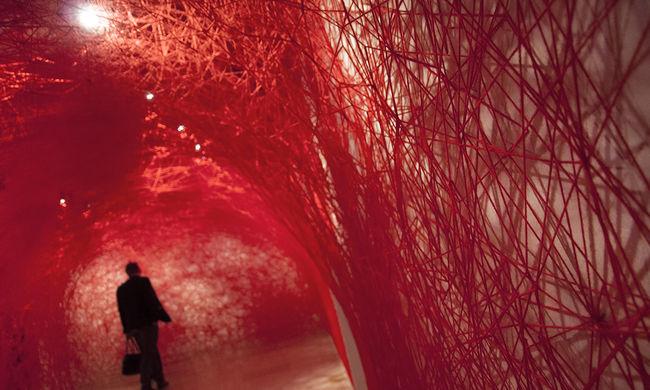 Megdöbbennek az emberek, amikor meglátják a vérvörös kiállítást