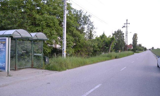 Mankóval közlekedő fiút raboltak ki fiatalok a buszmegállóban