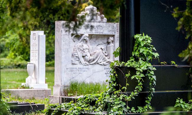 Meglepő dolog tűnt fel a temetőben, rendőröket kellett hívni
