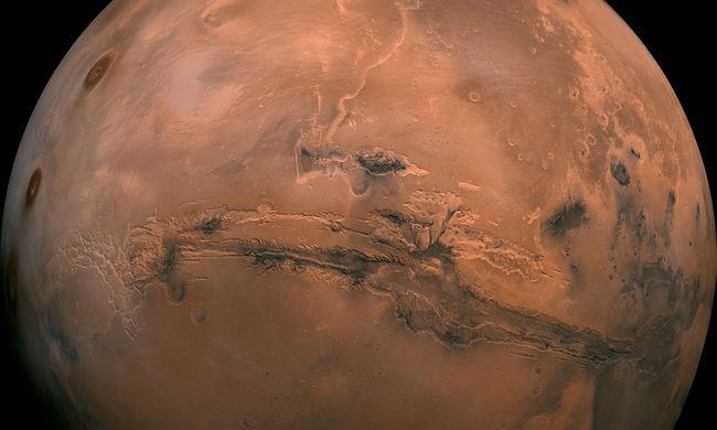 Cunamik lehettek a Marson