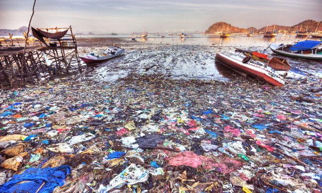 Annyi szemetet dobáltunk a tengerbe, hogy az már az egész emberiségre veszélyes