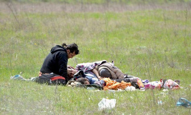 """""""Az emberek az erdőben végzik a dolgukat"""" - a szerb-magyar határ lehet az új Idomeni"""