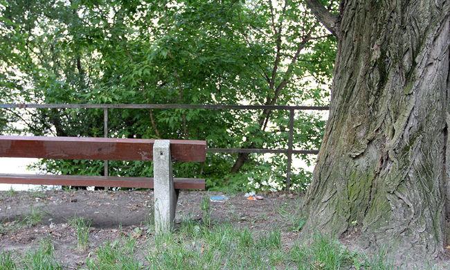 Gátlástalanul egymásnak esett két pár a népszerű parkban - videó