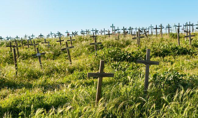 A szlovák halottak fele még élhetne