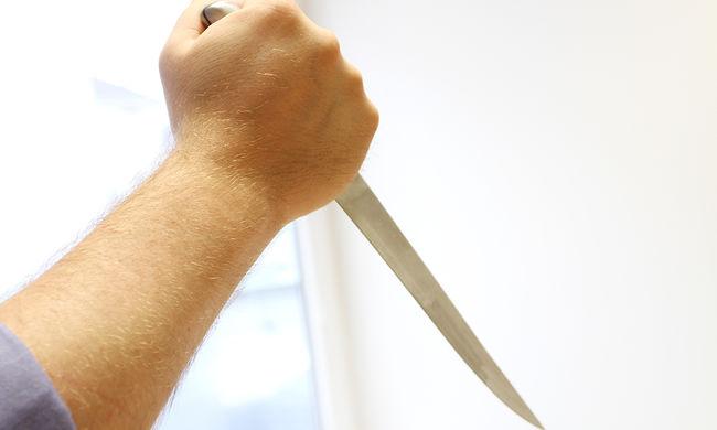 Kiderült: késsel fenyegetőzött egy budapesti fiatal, ezért vonult ki a TEK