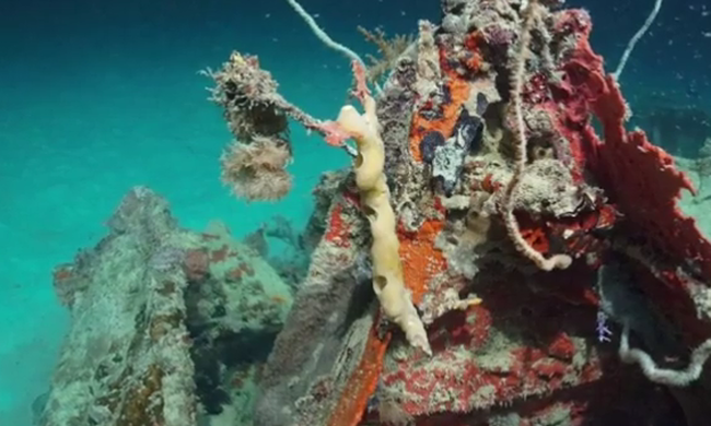 72 éve elsüllyedt bombázót és több tucat katonát találtak az óceán mélyén - videó