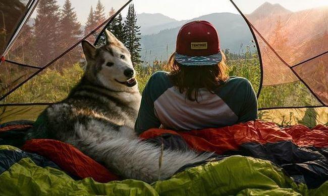 A boldogság a kutyáknak is jár