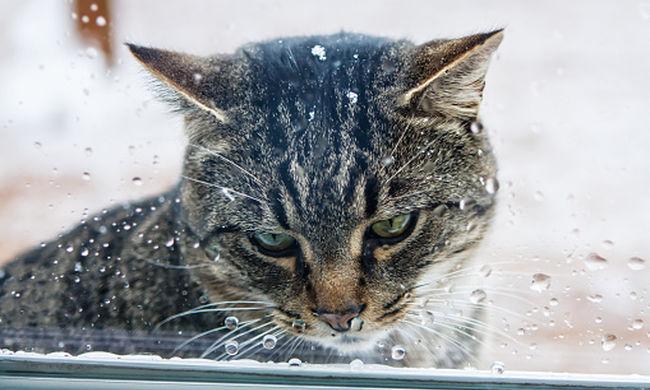 Rossz hír a frontérzékenyeknek: jön a hidegfront, megint esni fog