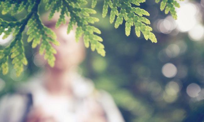 Miklós, a szatír önkielégítést végzett, miközben a napozó nőt bámulta