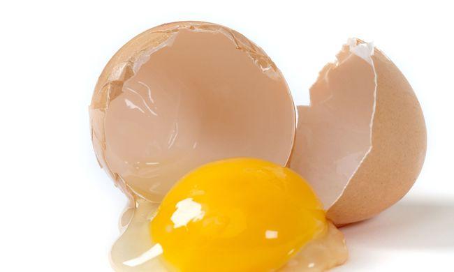 Ezért nem lenne szabad soha a tojást a hűtőben tartani