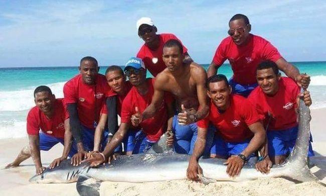 Addig fotózkodtak a cápával, míg belepusztult - videó