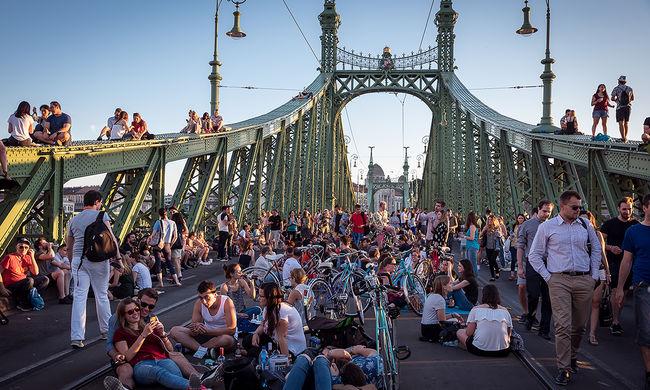 A legújabb piknikező: a Szabadság híd - képgaléria