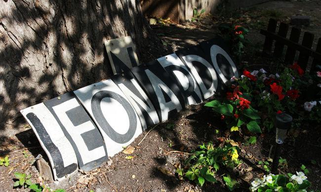 Eldugott helyeken, a város szívében zöldellnek a közösségi kertek