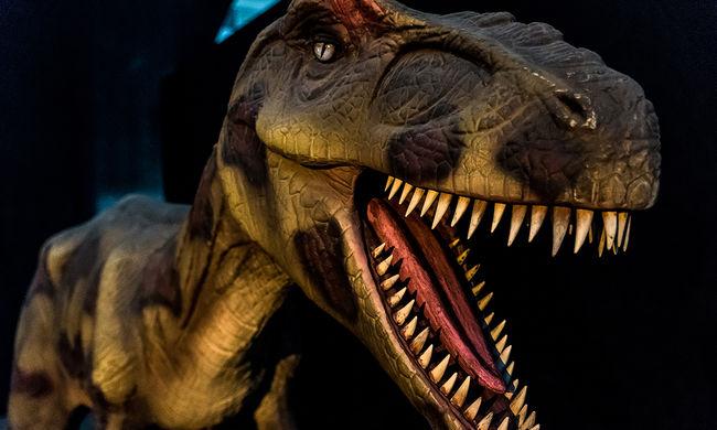 Élethű dinókat szeretne látni? Irány a Millenáris! - képgaléria