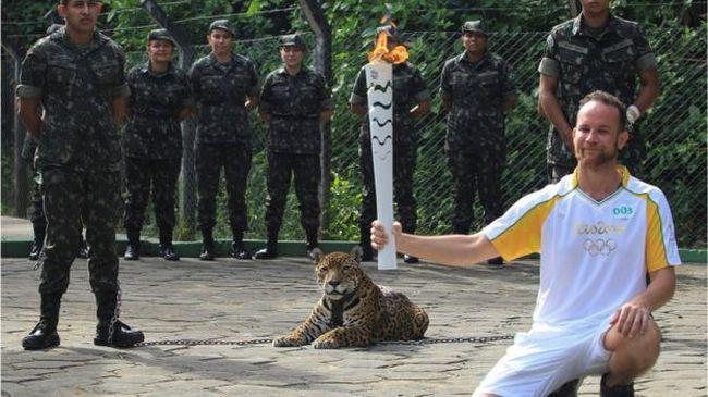 Kivégezték a kabalaállatot, agyonlőtték az olimpiai láng mellé láncolt jaguárt