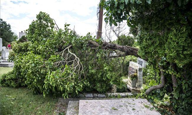Többmilliós kárt okozott az országszerte pusztító vihar