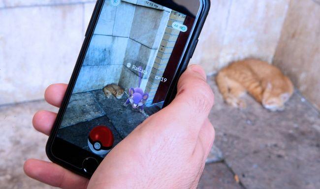 Addig üldözték a Pokémonokat, míg egy másik országban kötöttek ki