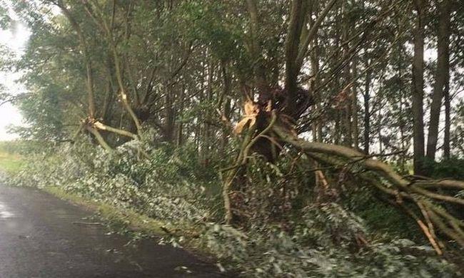 Vihar dúlta fel az országot - videó