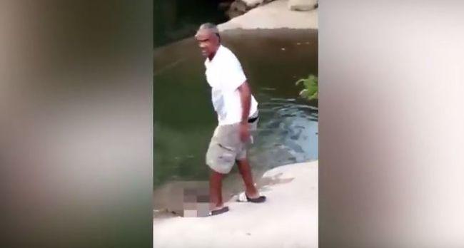 Halálra verte a teknőst, állítja, önvédelem volt - videó