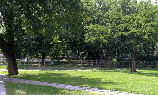 Játszótér mellett nyúlt az 5 éves kislány a drogos tűbe
